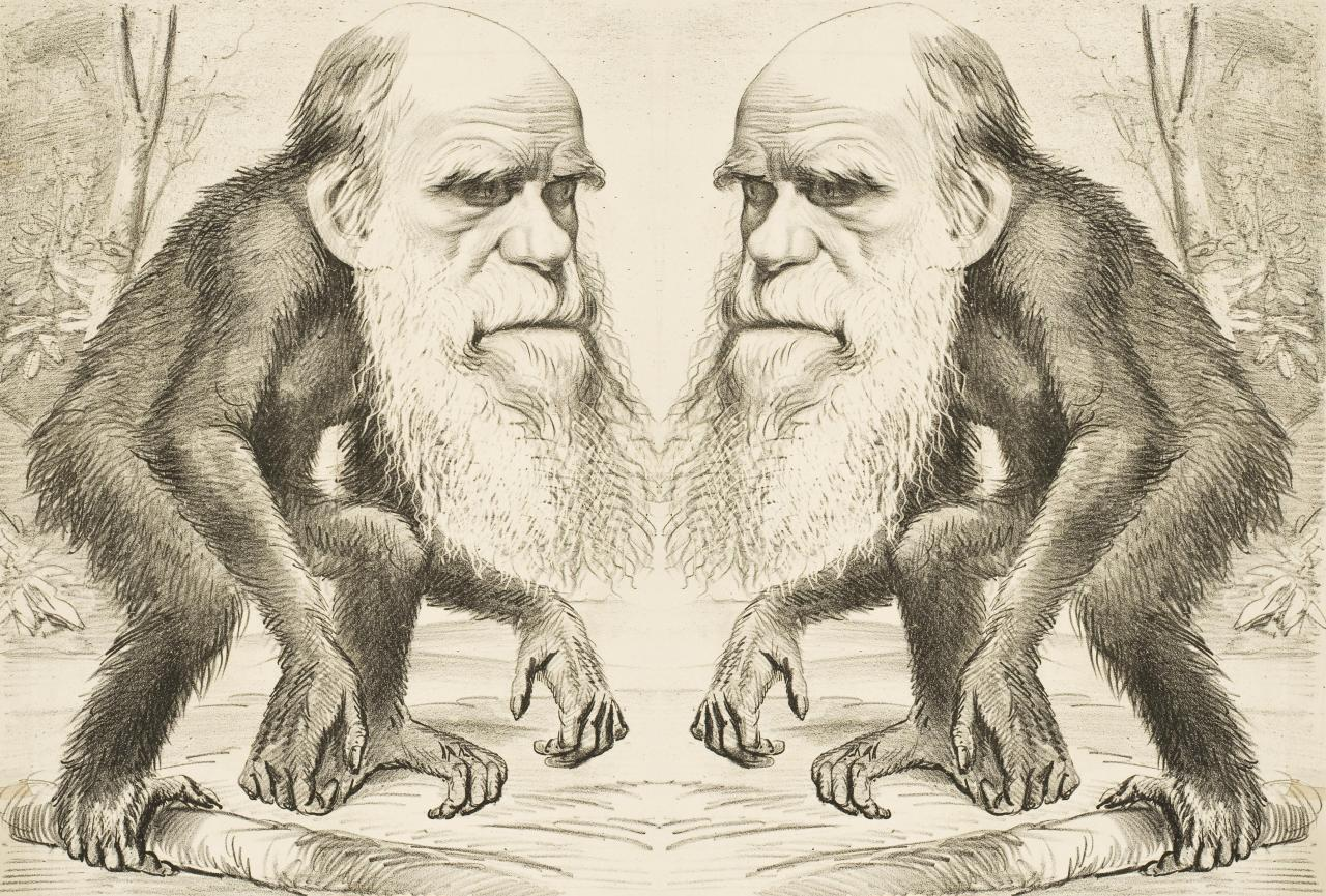 darwin s living legacy Darwin was born this year (same year that lamarck published ideas on evolution) observed similarities between living and fossil organisms, and the diversity of life on the galapagos islands what did darwin do on the voyage (beagle).